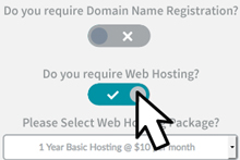 select-domain-hosting